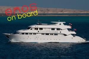Das Diveaholics Safariboot Seawolf Dominator