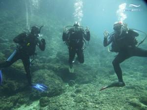 Drei Taucher posieren unter Wasser vor der Kamera